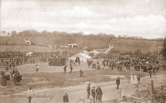 Dyrskue i Svendborg senest 1908